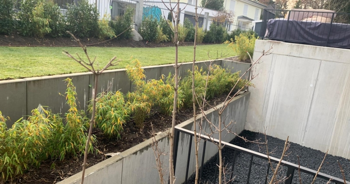Gartenneugestaltung in Gräfelfing
